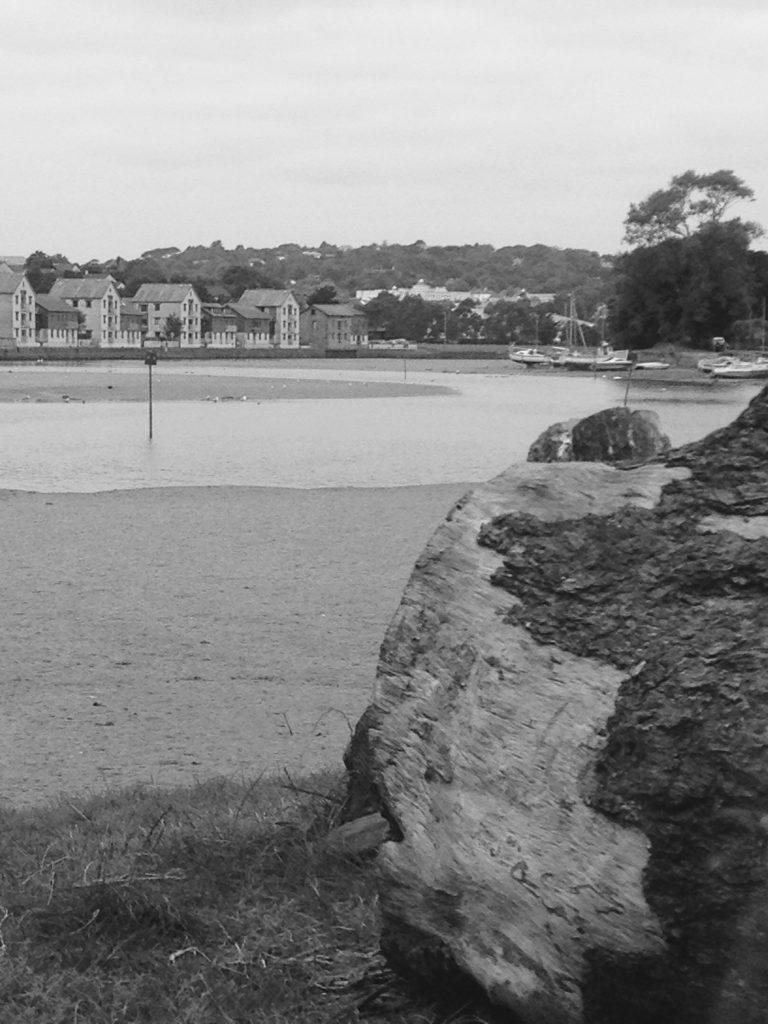 My Sunday Photo 14/08/2016 – Down by Malpas River