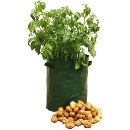 potato patio planter