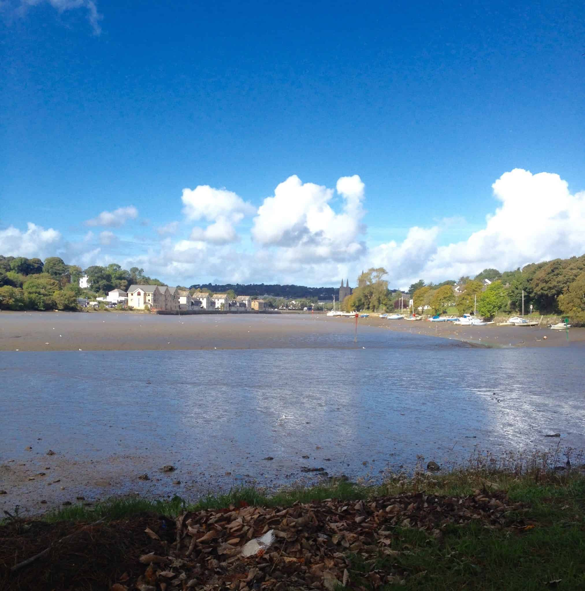Our day out with Aldi -Malpas park-cornwall