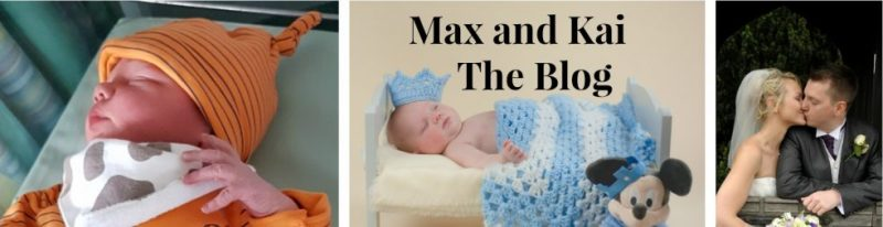 max-and-kai-the-blog