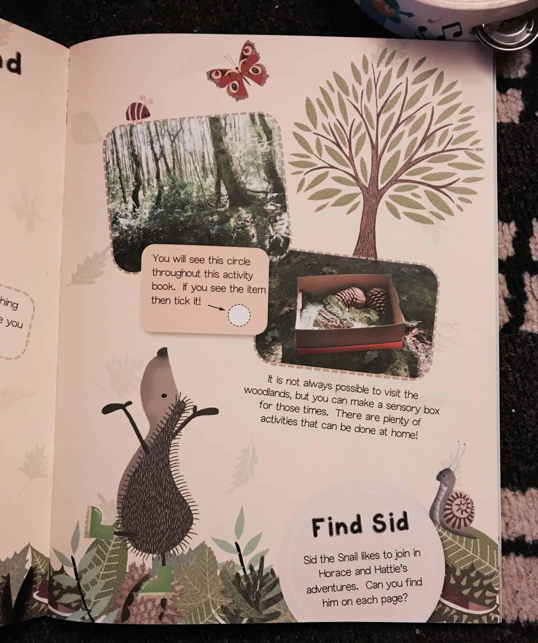 Hedgehugs Activity Book