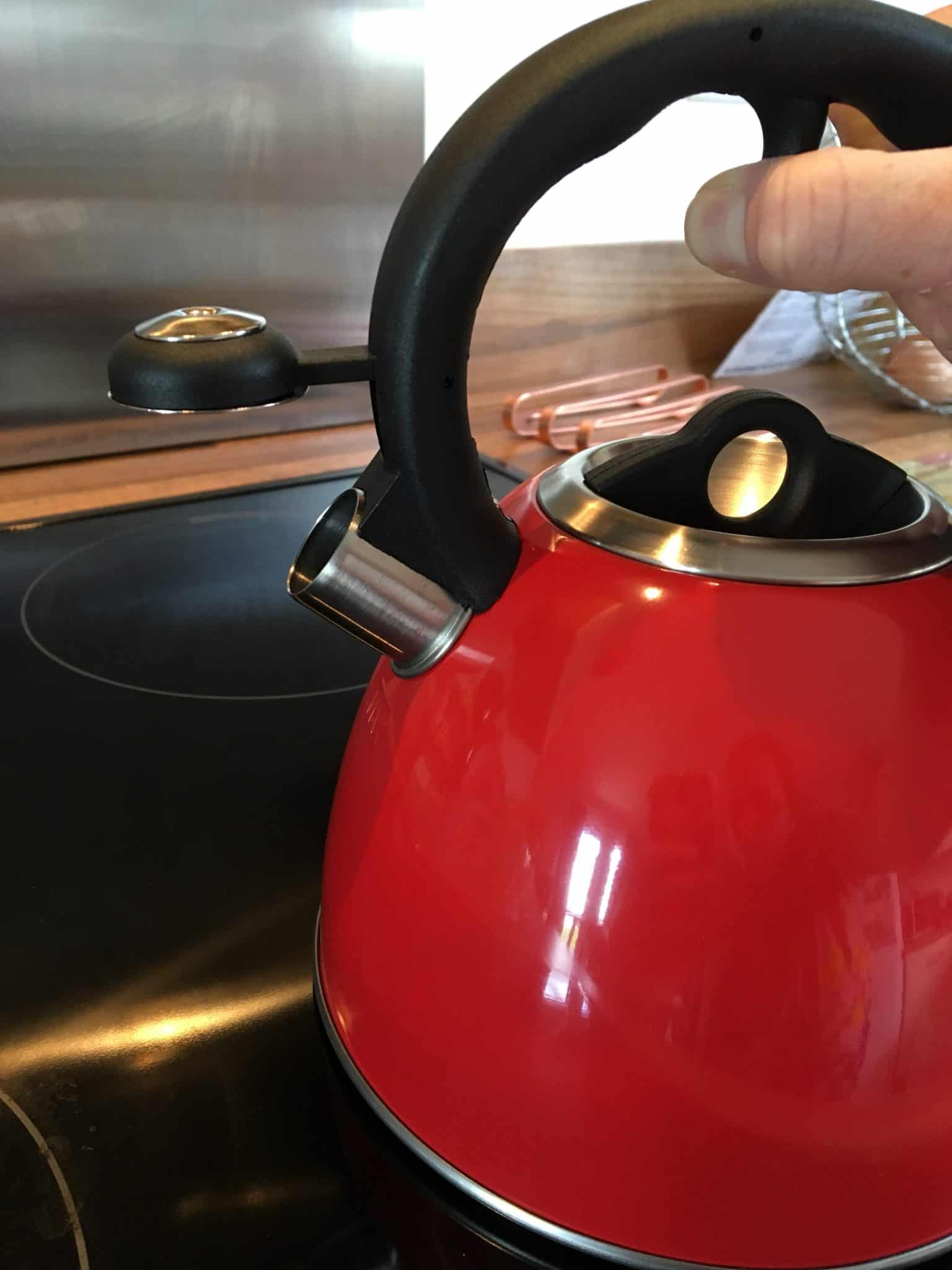Spout on a whistling tea kettle