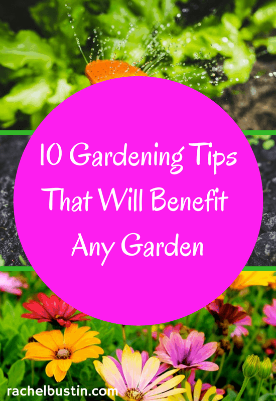 10 gardening tips that will benefit any garden