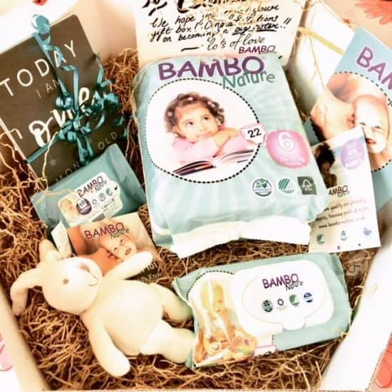 Eco-Friendly Nappies: Bambo Nature Nappy Review