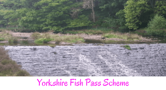 Yorkshire Fish Pass Scheme