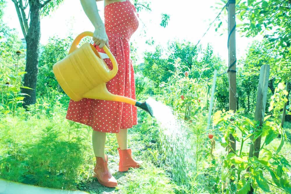 gardening app for avid gardeners