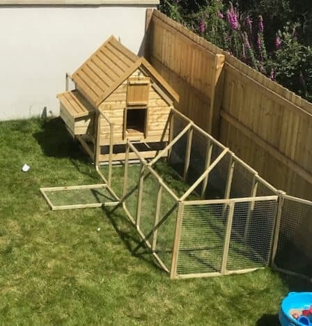 Our Weekend Project - Chicken Coop Building