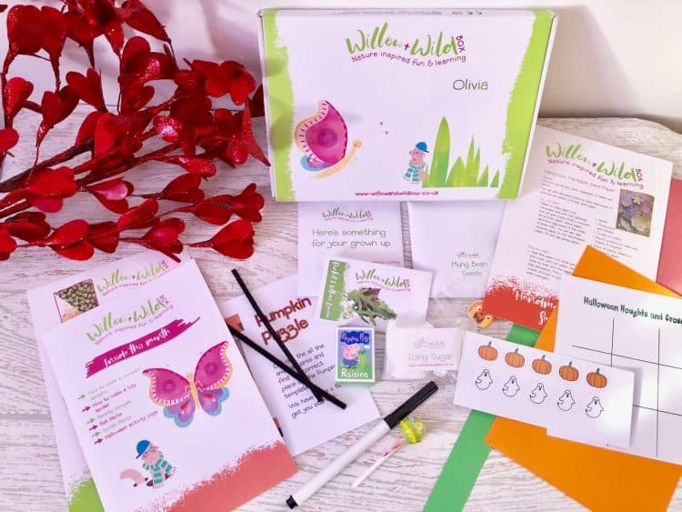 Willow & Wild Children's Subscription Box