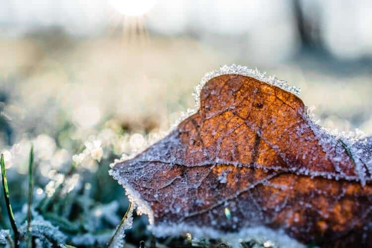 How to make the most out of your home's outside areas this winter