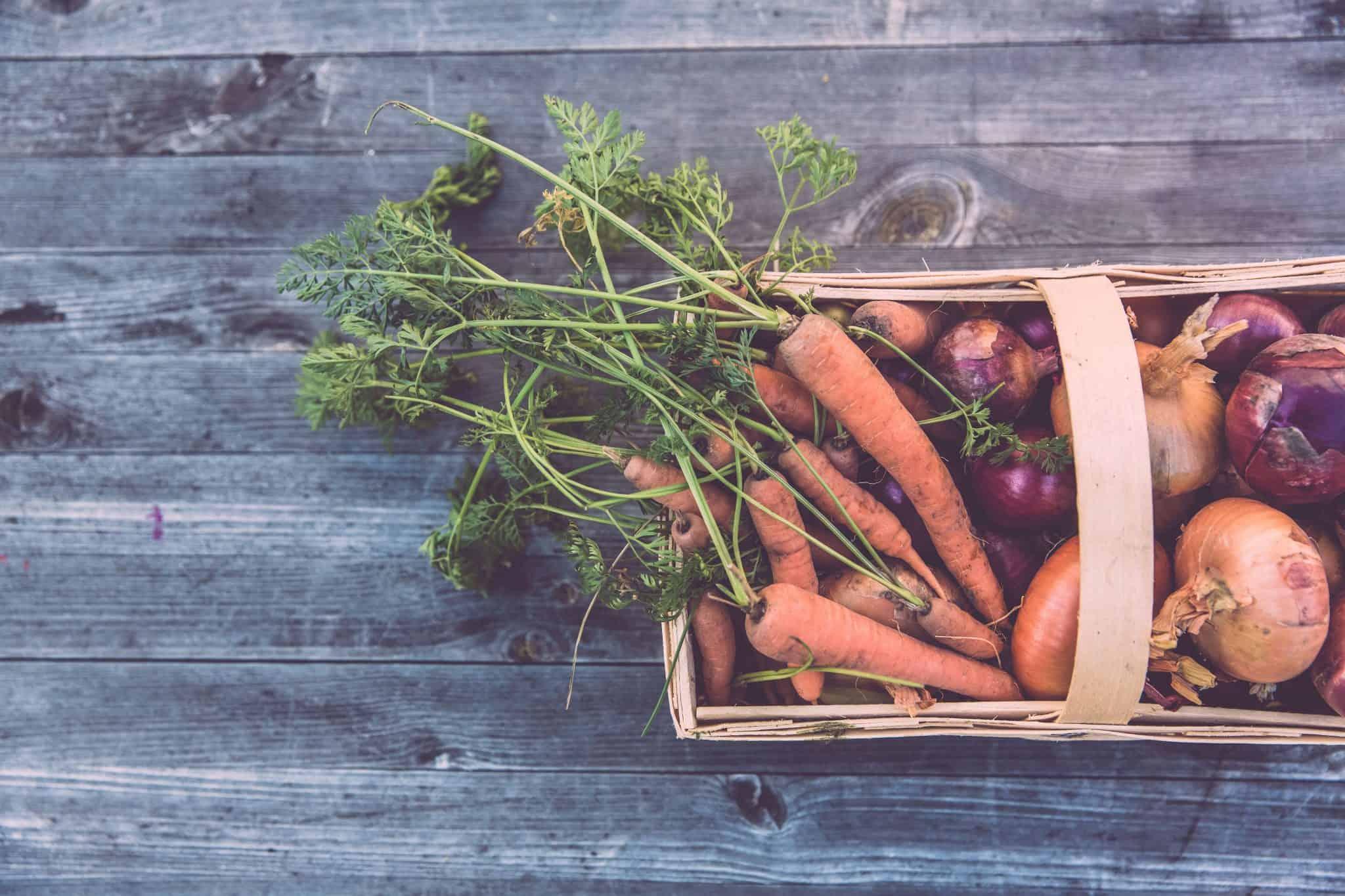 Top Tips - What To Grow In Winter Vegetable Garden