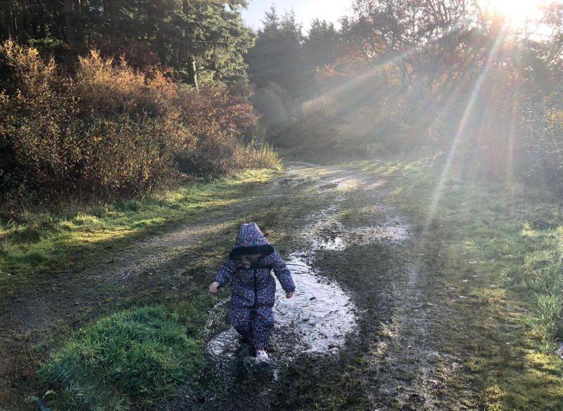Autumn muddy puddles