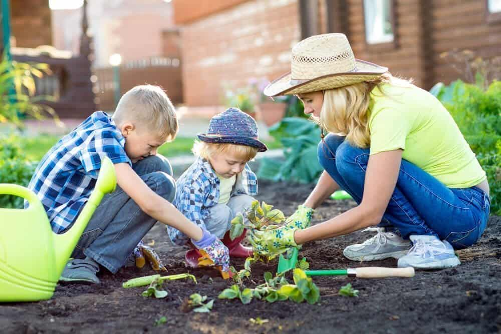 5 Tips On Creating A Child Friendly Garden