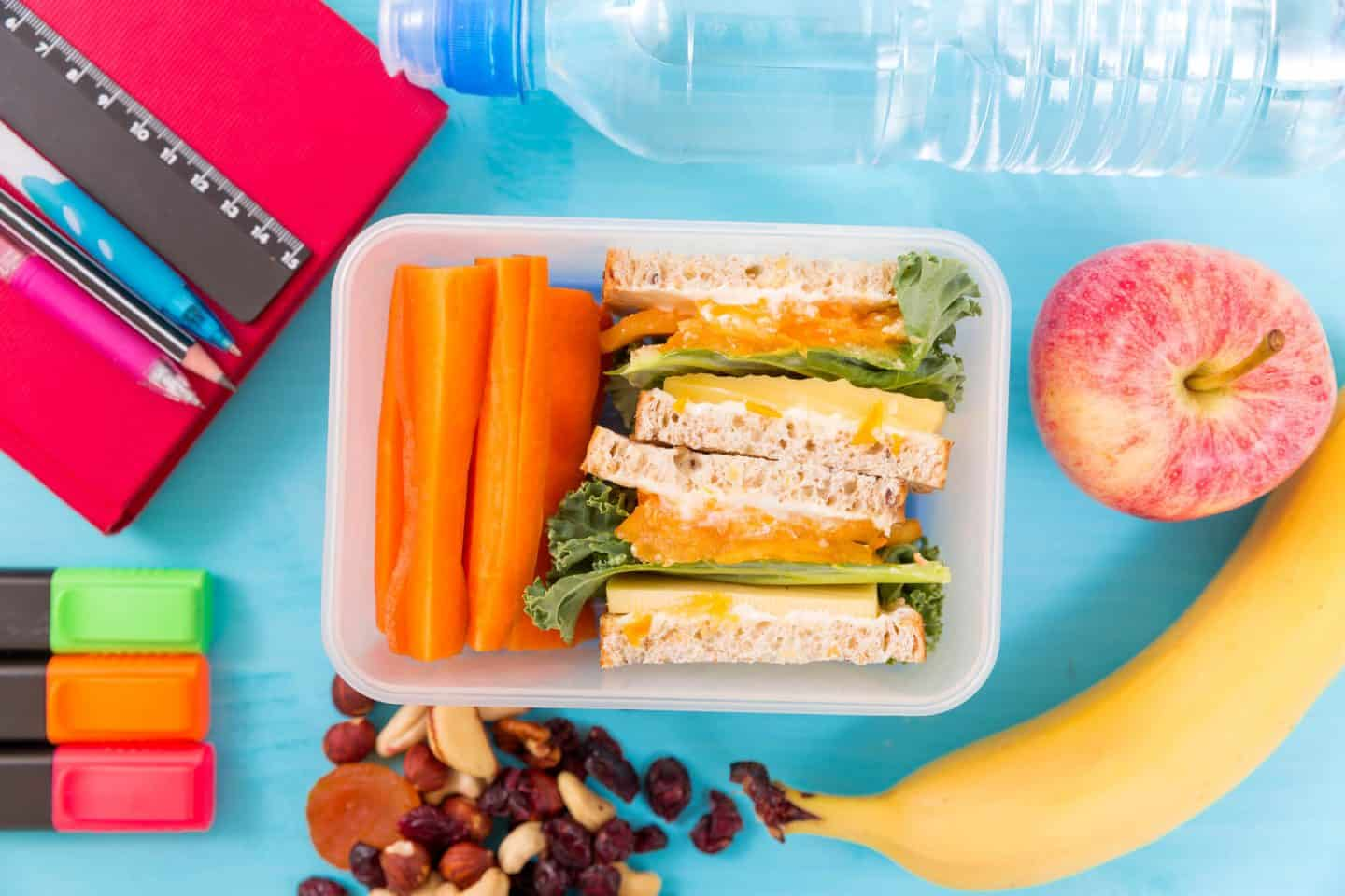 Providing Your Kids Perfect Lunch