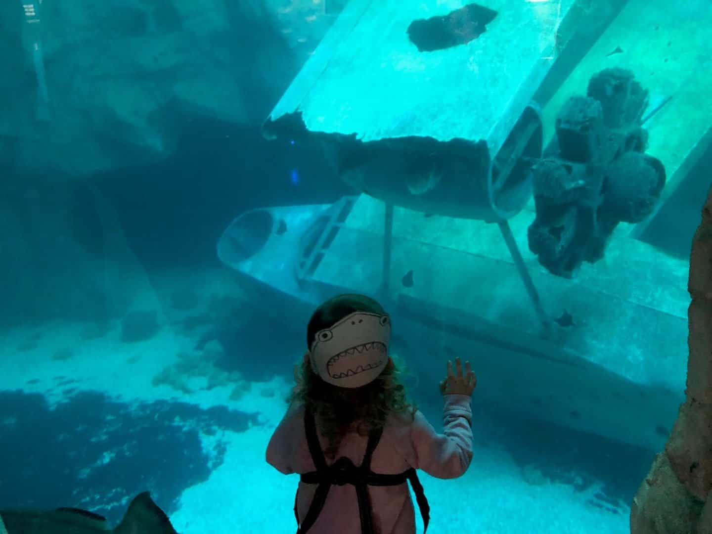baby girl looking at WWII Plane under water