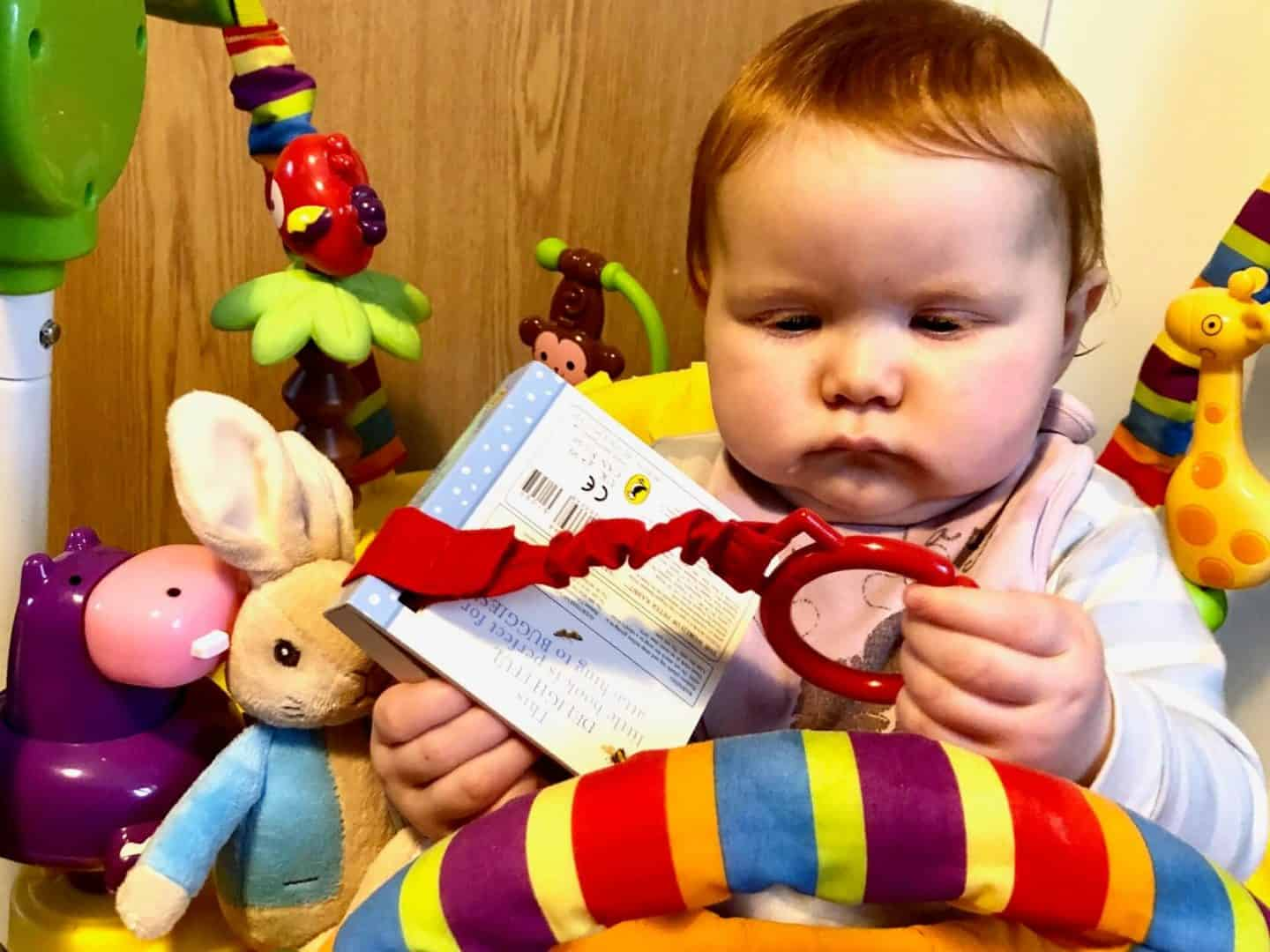Baby Dottie with Peter Rabbit and Buggy book