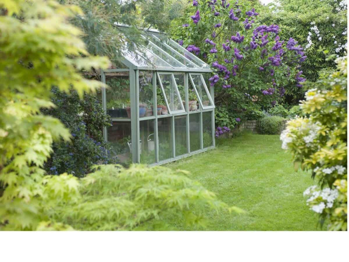 Getting your garden Summer ready