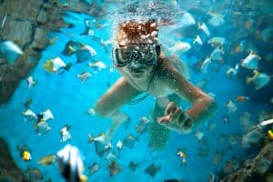 Here are five reasons why everyone that loves the water should try freediving today
