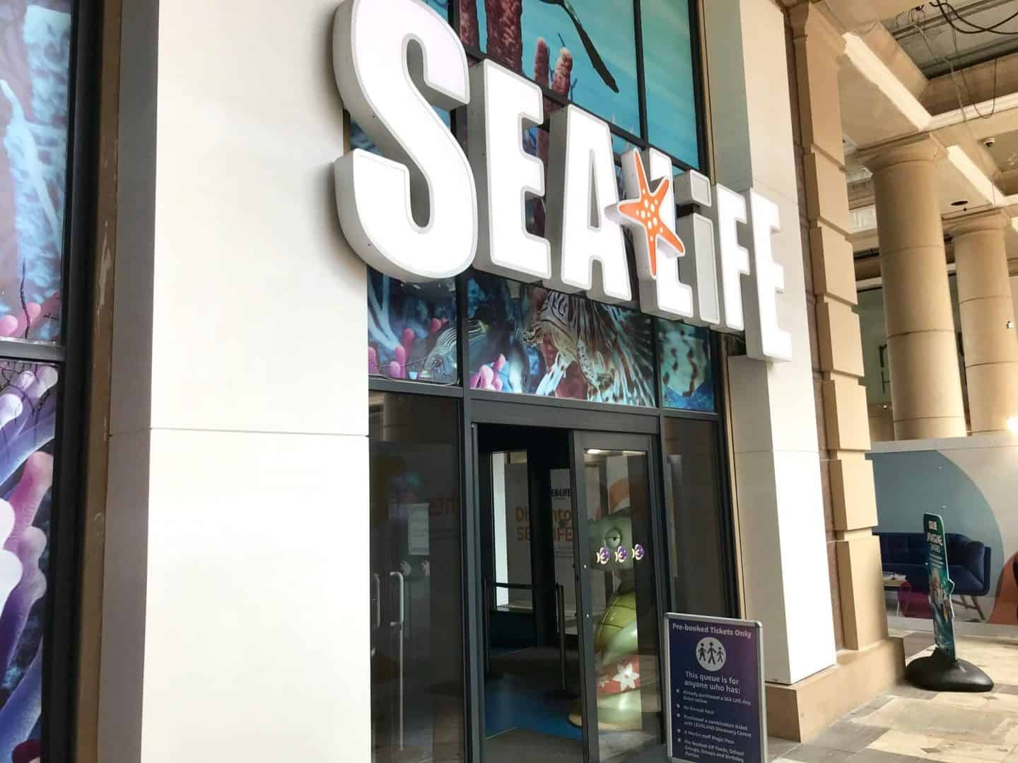A Day Out In Manchester: Sea Life Manchester Aquarium Review