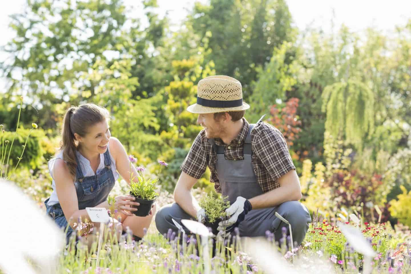 4-Top-Gardening-Trends-For-2019-