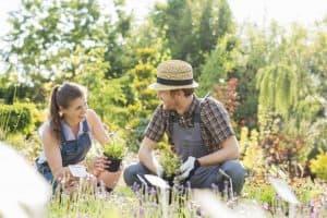 4-Top-Gardening-Trends-For-2019-