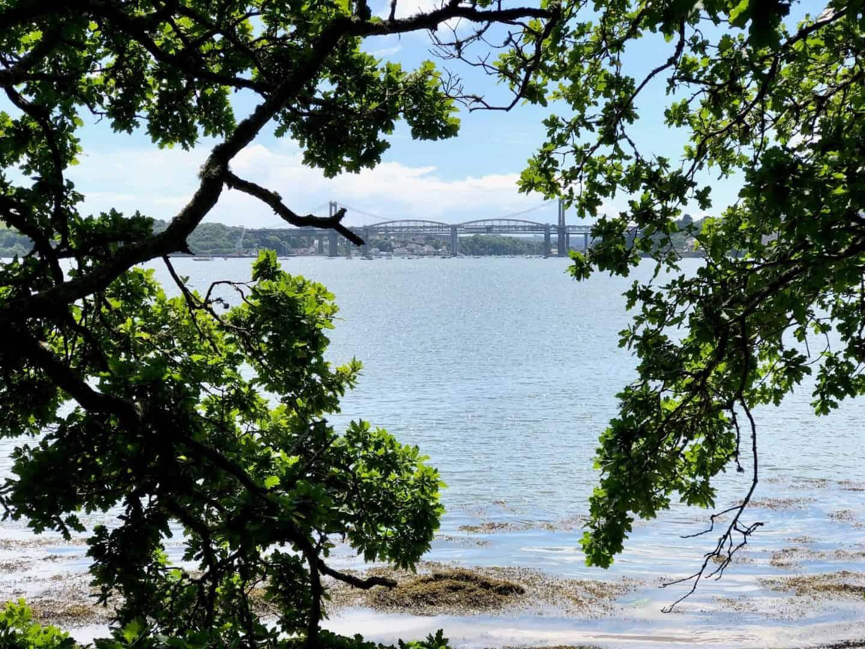 Over looking the Tamar Estuary at China Fleet