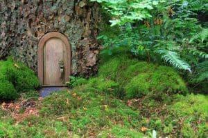 Creating Your Children's Dream Garden
