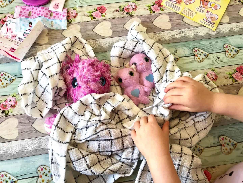 towel drying the scruff-a-luvs