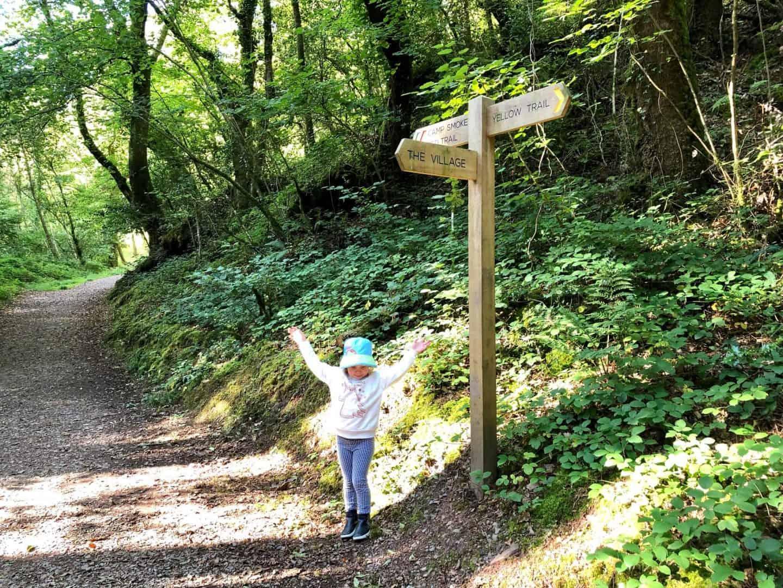 Yellow Trail at Bluestone