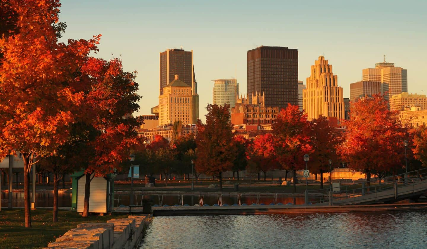 8 Reasons to Plan a Family Holiday in Montreal, Canada