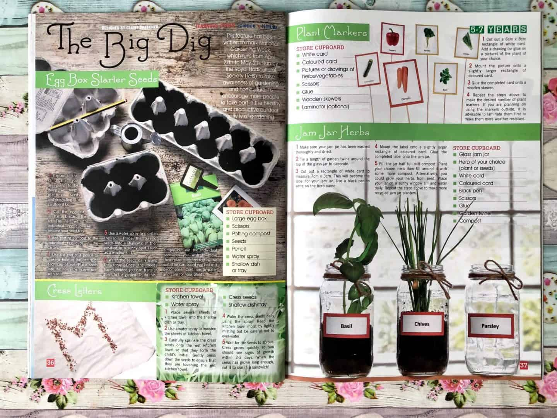 Jam Jar Herbs Craft and Egg Box Starter Seeds