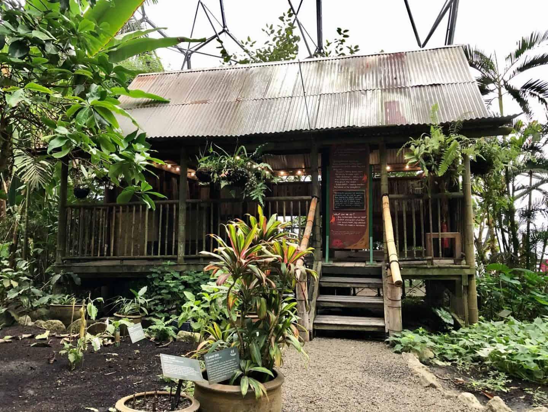 The Malaysian House