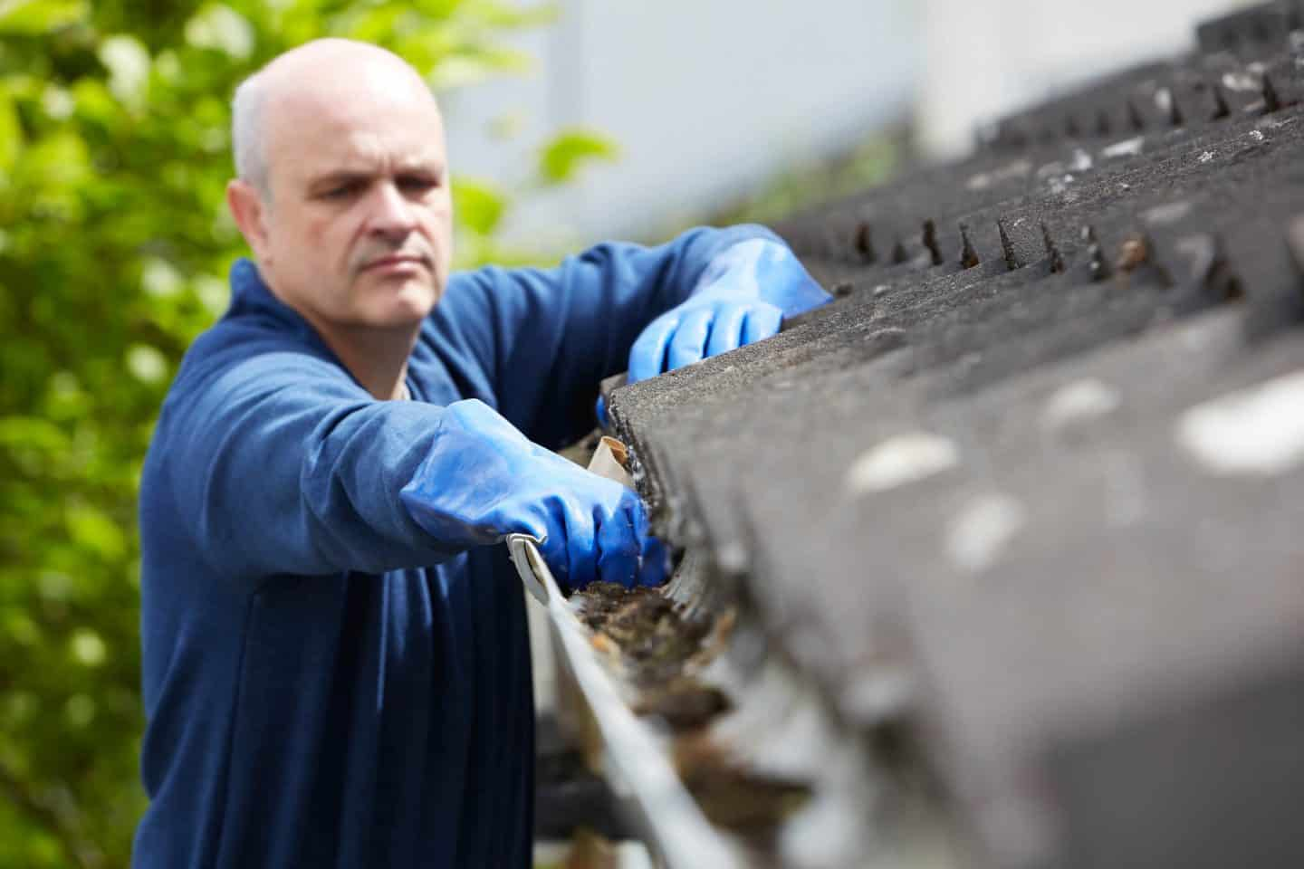 6 Simple Home Maintenance Tips -  guttering