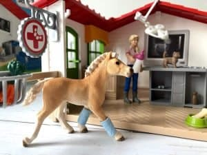 The pony at the vets