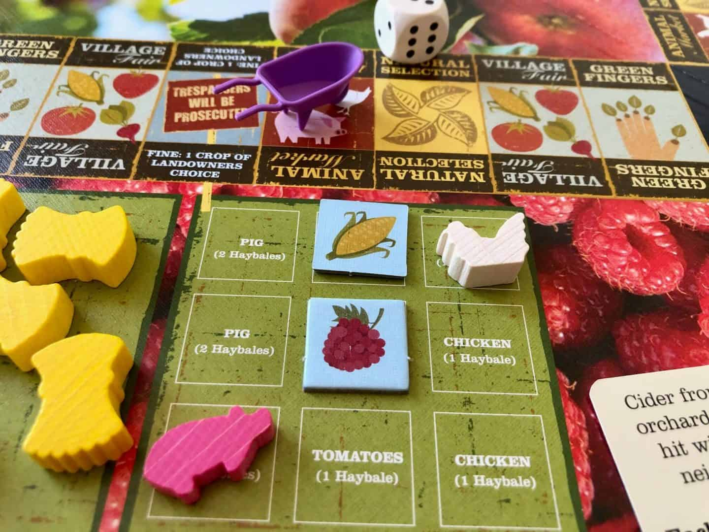 close up of The Good Life board game
