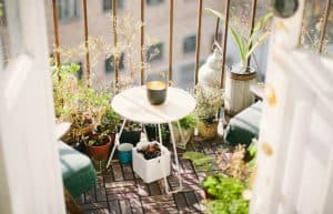 Five Gardening Tips For Apartment Balconies