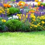 It's Time to Put a Little Effort Into Your Garden