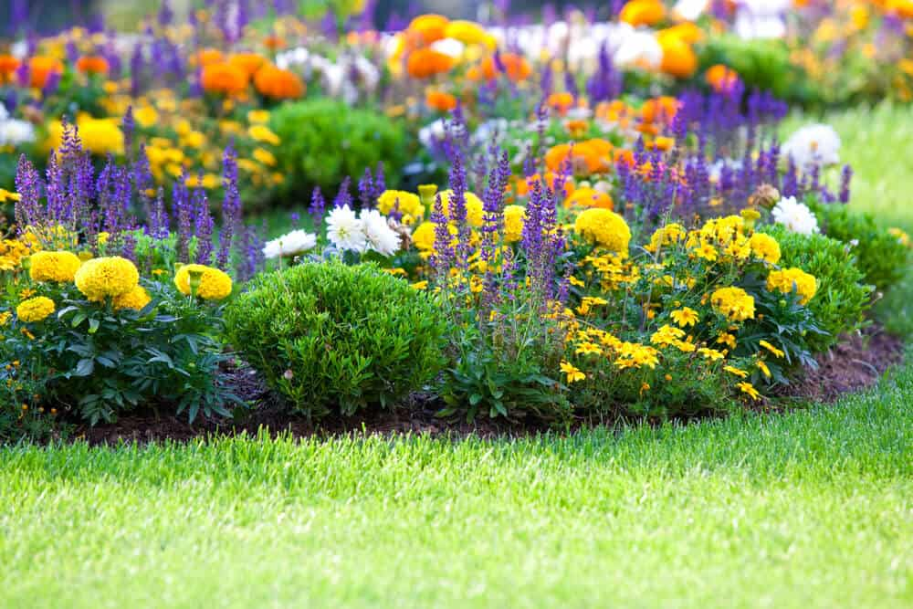 It's Time to Put a Little Effort Into Your Garden!