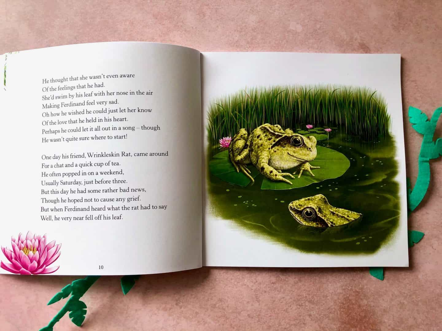The Tale of Ferdinand Frog by Mark Hughes book review
