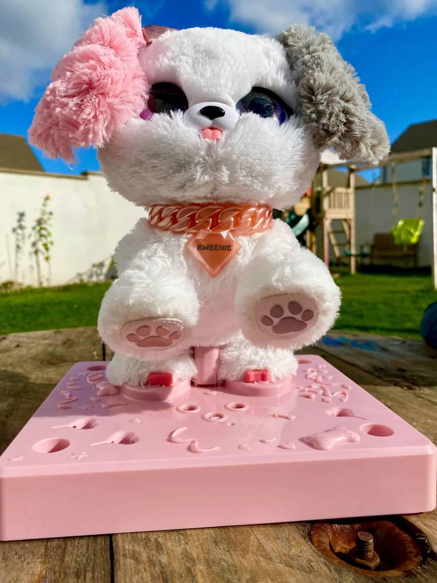 Present Pets Kweenie on her platform