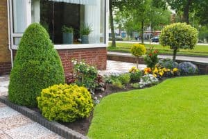 3 Things Your Front Garden Desperately Needs!
