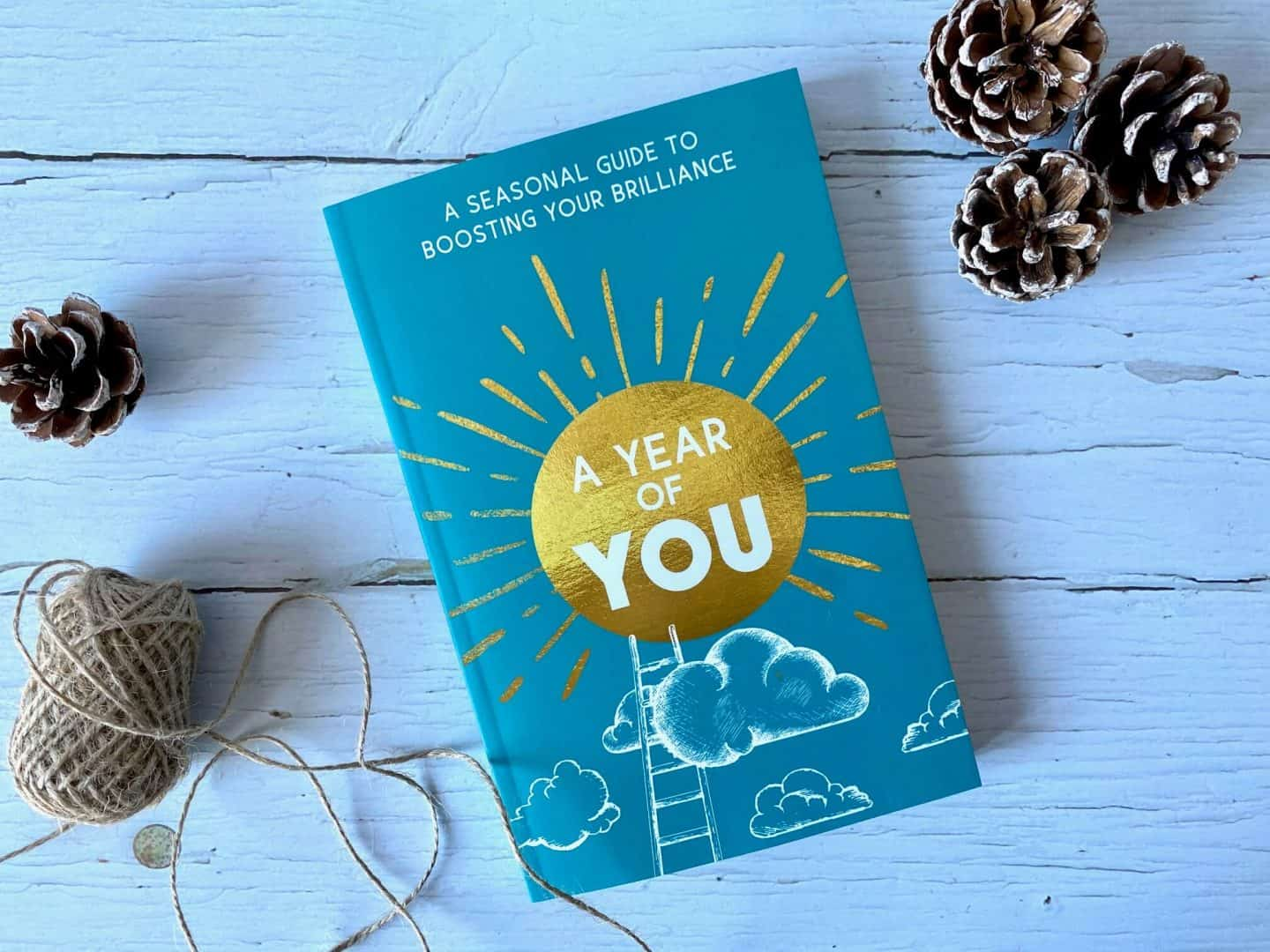 A Year of You