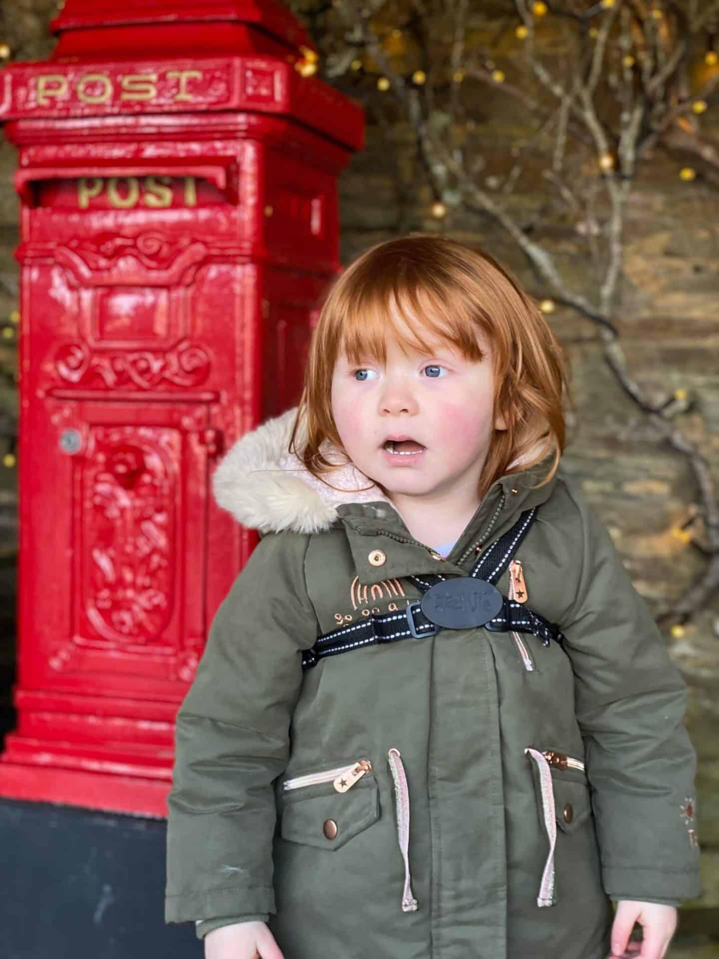 December 2020 - Little Dottie at Heligan Gardens