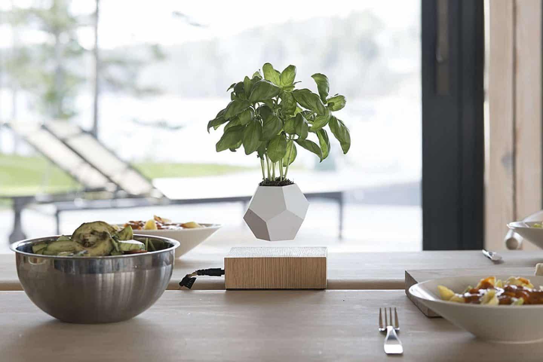 Floating-plant-pot